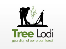 Tree Lodi Logo